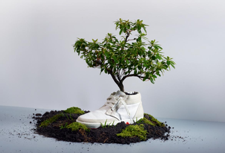 Tênis biodegradável da marca OAT ©Reprodução