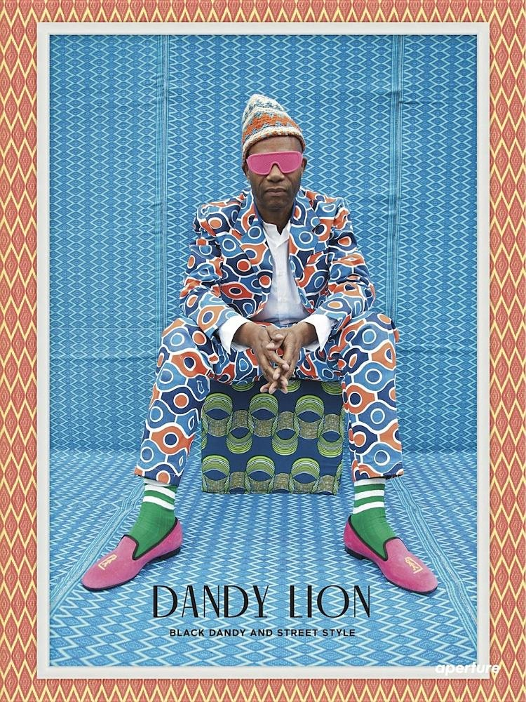 livro-dandy-lion