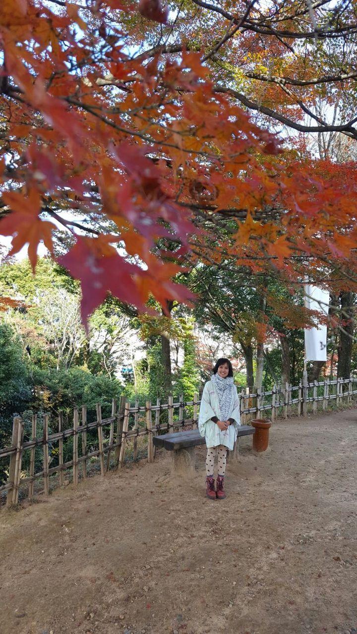 Kiri no Japão em foto da irmã Karol Miyazaki