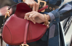 destaque-dior_saddle-bag_autumn-winter-2018-2019-2