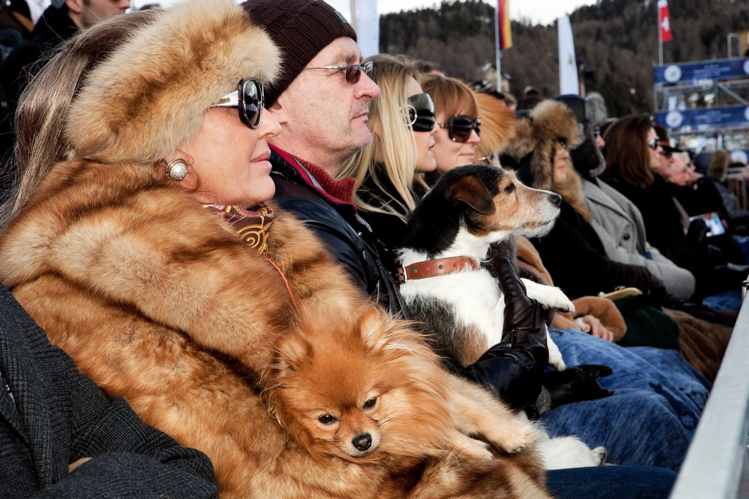 SWITZERLAND. St Moritz. Snow Polo World Cup. From 'Luxury'. 2011 / Reprodução